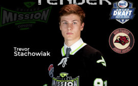 Stachowiak Signs Tender